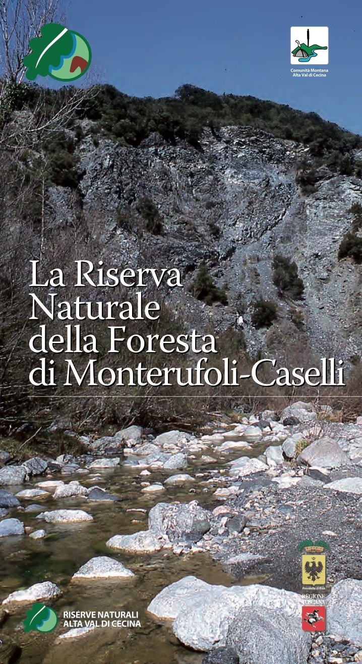 Inside the Monterufoli and Trossa forest